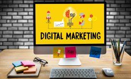 Web Studio vs Digital Agency